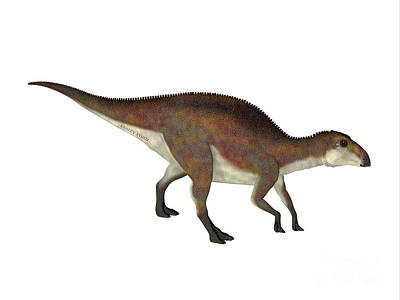Catch Of The Day - Brachylophosaurus Juvenile Walking by Corey Ford