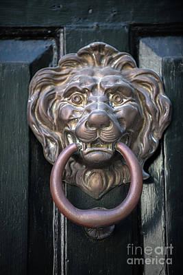 Polaroid Camera - Brass Lion - Door Knocker by Dale Powell