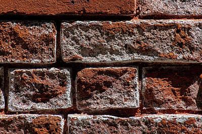 Nautical Animals - Brick Wall Detail by Robert Ullmann
