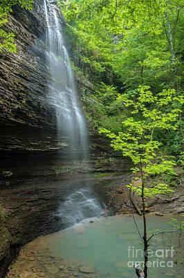 Photograph - Bridal Veil Falls in Ozark Mountains by Ranjay Mitra