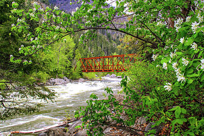 Christmas Christopher And Amanda Elwell - Bridge Over Icicle Creek by Susan Crossman Buscho