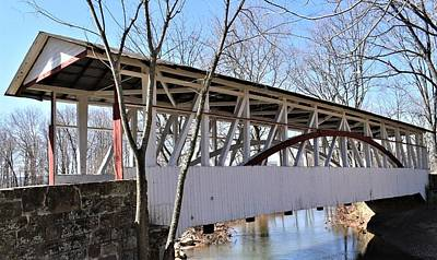 Rusty Trucks - Bridge To Nowhere by Karen Largent
