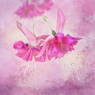 Latidude Image - Bright Pink Fuchsia Flowers - Square by Patti Deters