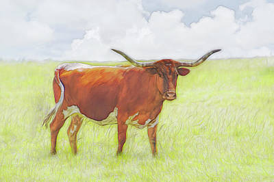 Latidude Image - Brown Longhorn On A Summer Day by Ann Powell