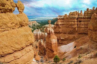 Studio Grafika Science - Bryce Canyon National Park 9 by Micah May