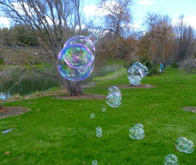 Photograph - Bubbles in the park by Jean Evans