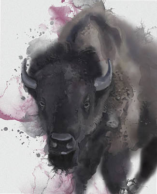 Everett Collection - Buffalo Portrait Vintage by Bekim M