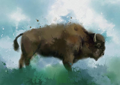 Everett Collection - Buffalo Vintage Watercolor by Bekim M