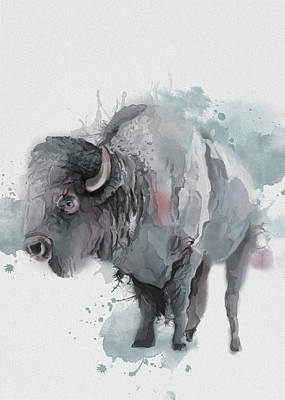 Everett Collection - Buffalo Watercolor Artistic by Bekim M