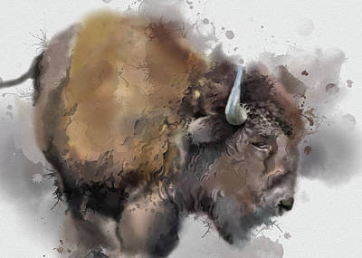 Everett Collection - Buffalo Watercolor Portrait by Bekim M