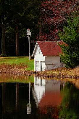 Animals Royalty-Free and Rights-Managed Images - Building Reflectin at the Lake by Sandra J