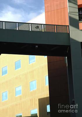 Polaroid Camera - Building Walkway by Steve Cukrov