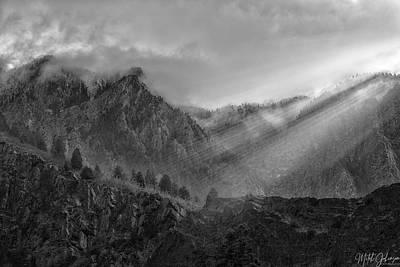 Winter Animals - Burst of Light 1 BW by Mitch Johanson