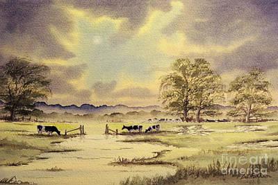 Tina Turner - Burst Of Sunlight - Grazing Holstein Cows  by Bill Holkham