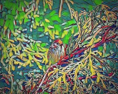 Have A Cupcake - Bushtit on Evergreen Branch Digital Painting by Marv Vandehey
