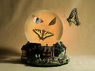 Bringing The Outdoors In - Butterflies On A Snow Globe by Buddy Mays