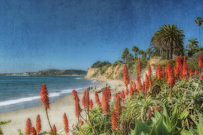 Photograph - Butterfly Beach 2 by Beth Taylor