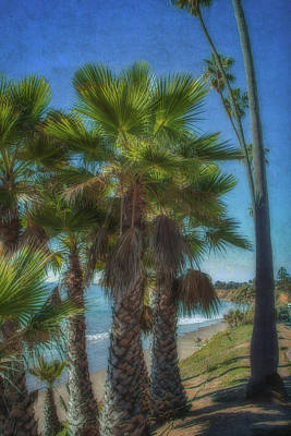 Photograph - Butterfly Beach 3 by Beth Taylor