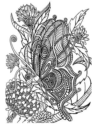 Animals Drawings - Butterfly by Jennifer Wheatley Wolf