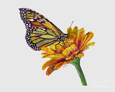 Spot Of Tea Rights Managed Images - Butterfly Kiss on White Royalty-Free Image by Hailey E Herrera