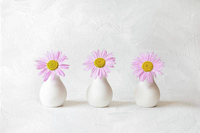 Clouds Rights Managed Images - BV05 - Pink Daisies in Bud Vases  Royalty-Free Image by Patti Deters