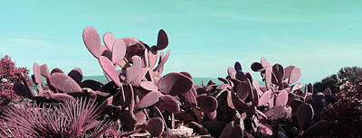 Surrealism Royalty Free Images - Cactus Pear Opuntia Ficus-Indica Prickly Pear - Surreal Art by Ahmet Asar Royalty-Free Image by Celestial Images