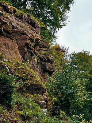 David Gallie Royalty-Free and Rights-Managed Images - Calderglen Autumn 2021 - 10 by David Gallie