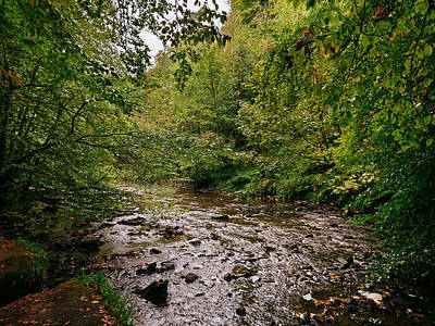 David Gallie Royalty-Free and Rights-Managed Images - Calderglen Autumn 2021 - 13 by David Gallie