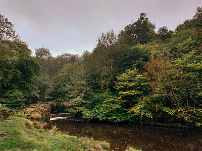 David Gallie Royalty-Free and Rights-Managed Images - Calderglen Autumn 2021 - 16 by David Gallie