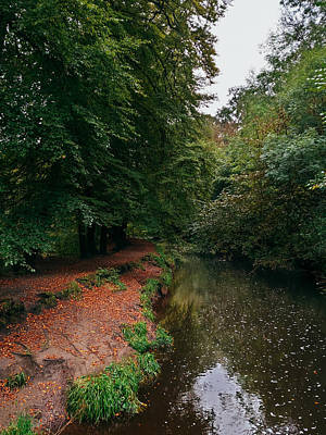 David Gallie Royalty-Free and Rights-Managed Images - Calderglen Autumn 2021 - 18 by David Gallie