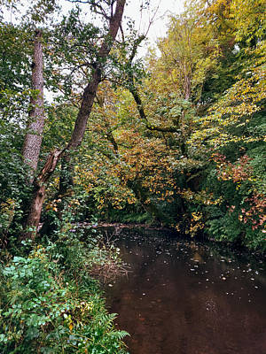 David Gallie Royalty-Free and Rights-Managed Images - Calderglen Autumn 2021 - 19 by David Gallie