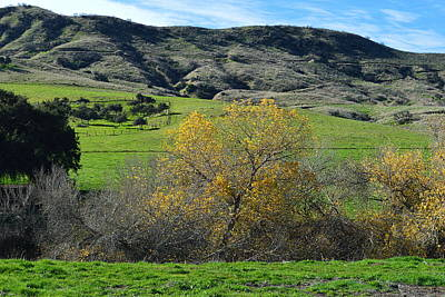 Featured Tapestry Designs - California Back Roads - Two by Glenn McCarthy Art and Photography