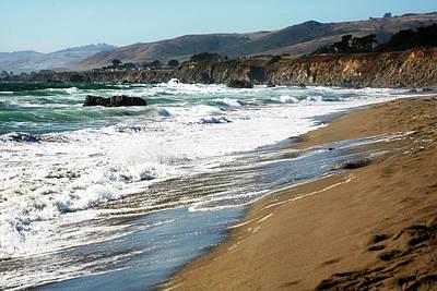 Nautical Animals - California Coastal Scene by Marilyn Hunt