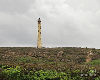 Boho Christmas - California Lighthouse in Aruba  0923 by Jack Schultz