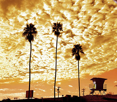 The Playroom Royalty Free Images - California Sunset With Palm Trees Royalty-Free Image by Larry Butterworth