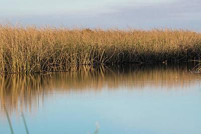 Photograph - Calm November Day by Alan C Wade