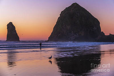 Royalty-Free and Rights-Managed Images - Cannon Beach Sunset Fisherman and Seagull by Mike Reid