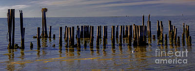 Keith Richards Royalty Free Images - Cape Charles Pilings Royalty-Free Image by Norma Brandsberg