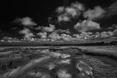 Photograph - Cape Cod Marches Black and White Landscape by Dapixara Art