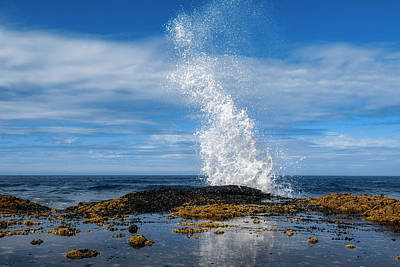 Royalty-Free and Rights-Managed Images - Cape Perpetua Crashing Wave 2 by Pelo Blanco Photo
