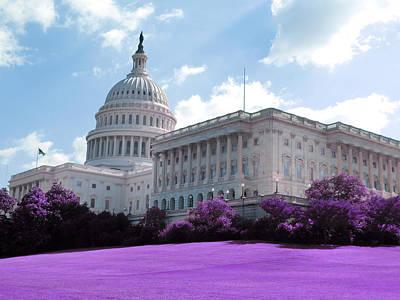 Wild And Wacky Portraits Rights Managed Images - Capitol Building - Infrared - Purple Royalty-Free Image by Celestial Images
