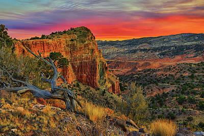 Photograph - Capitol Reef South Desert Sunset by Greg Norrell