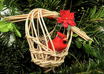 Animals Royalty-Free and Rights-Managed Images - Cardinal in a Basket by Jennifer Wheatley Wolf