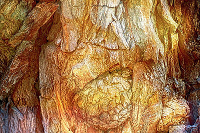Photograph - Carved by Nature by Anthony M Davis