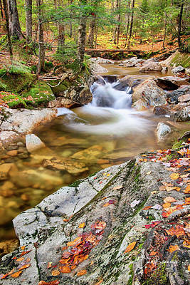 Dan Beauvais Royalty-Free and Rights-Managed Images - Cascade in the Pemigewasset 3551 by Dan Beauvais