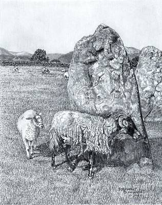 Drawing - Castlerigg and Sheep by Stephany Elsworth