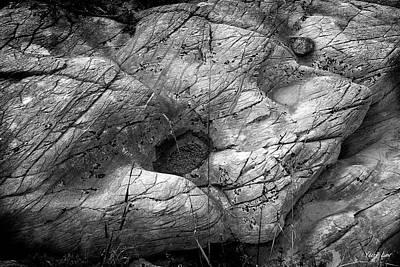 American Milestones - Cat Stone by Yuri Lev