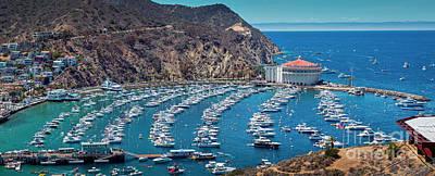 Namaste With Pixels Royalty Free Images - Catalina Island Avalon Panorama Royalty-Free Image by David Zanzinger