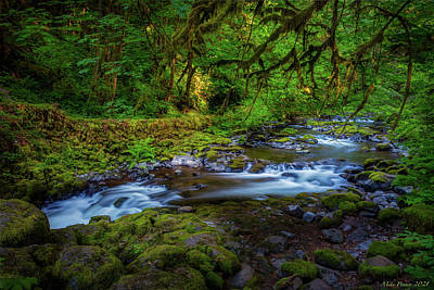 City Scenes - Cedar Creek flowing by Mike Penney