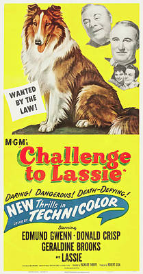 Pasta Al Dente Royalty Free Images - Challenge to Lassie movie poster, 1949 Royalty-Free Image by Stars on Art